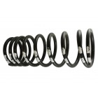 Coil Spring 110 Front Drv/Leve