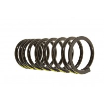 Coil Spring 110 Front Psg/Leve
